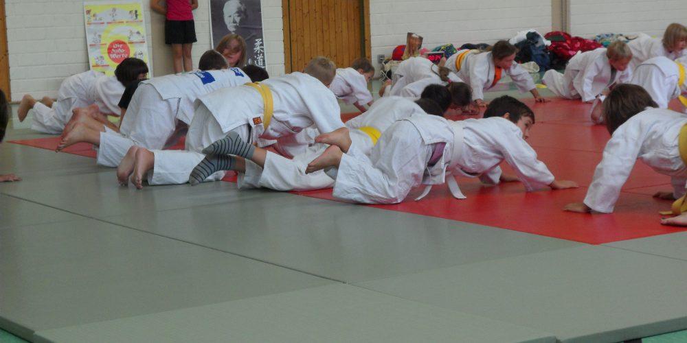 Judo tut nicht weh!