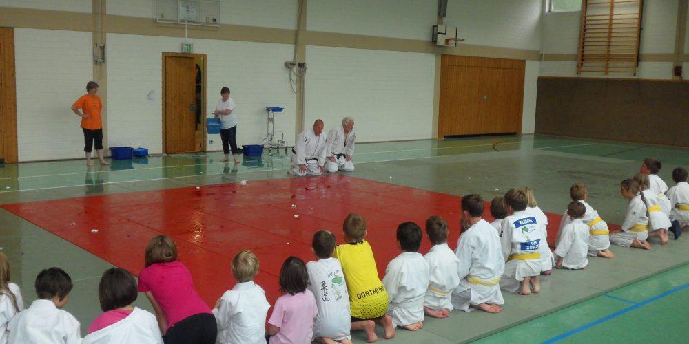 Judo erzieht
