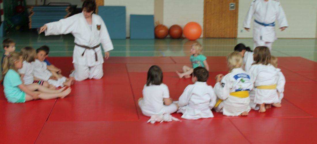 Judo ist nicht teuer