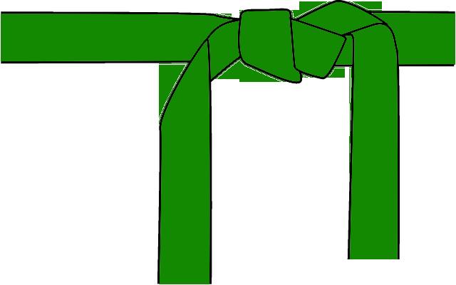 3. Kyu